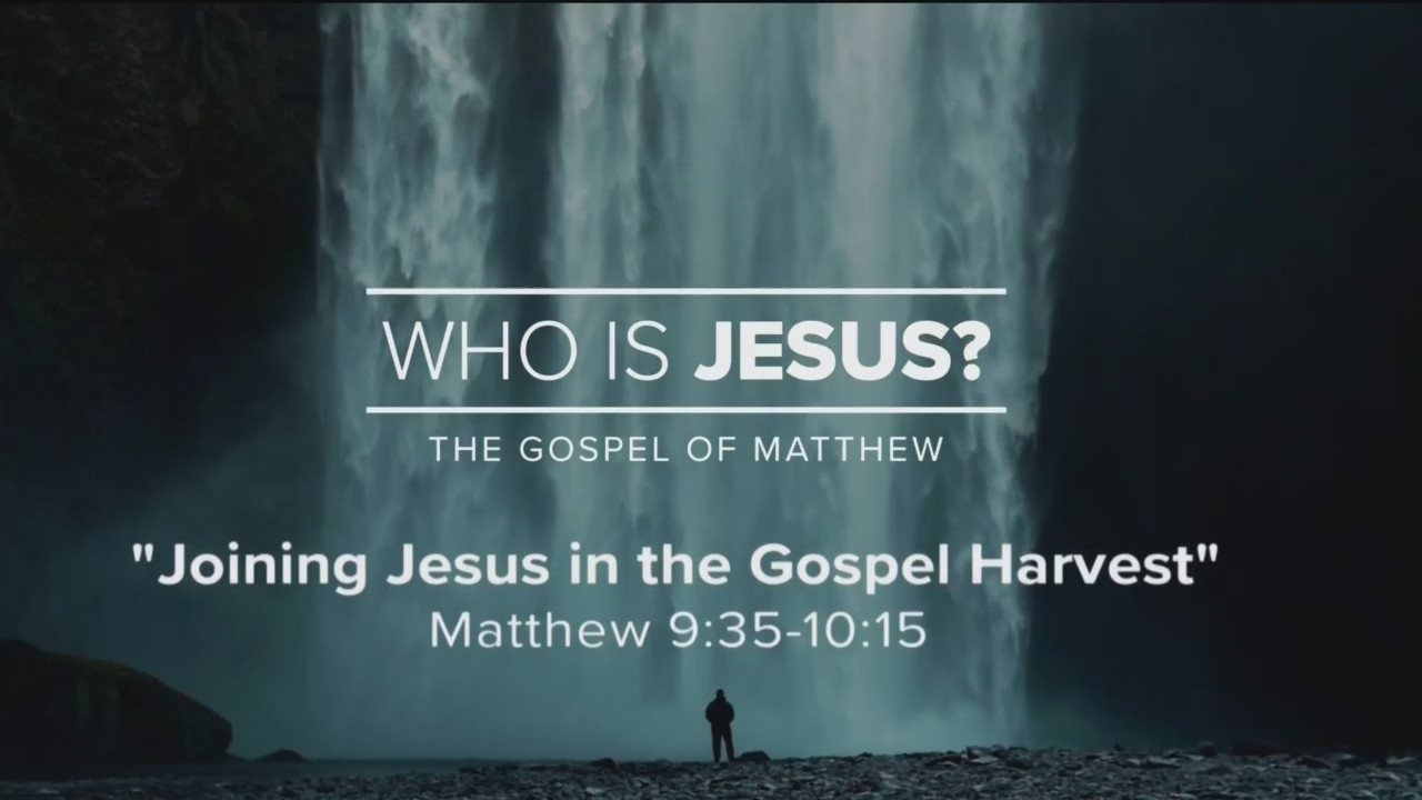 Today's Walk - Joining Jesus in the Gospel Harvest