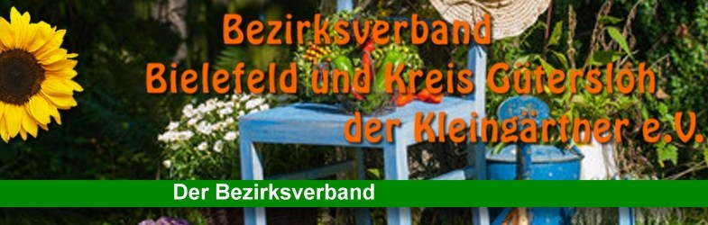 Internationaler Verband