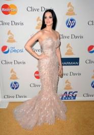 Katy+Perry+2011+Pre+GRAMMY+Gala+Salute+Industry+PGGwGn-U314l