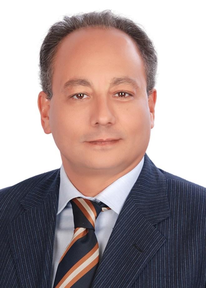 Al Arabiya & AMF Panel-Emad Gad- Panelist