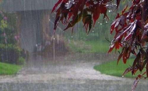 हरियाणा के कई हिस्सों में होगी भारी बारिश