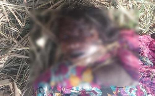 गन्ने के खेत में मिला महिला का कई दिन पुराना शव