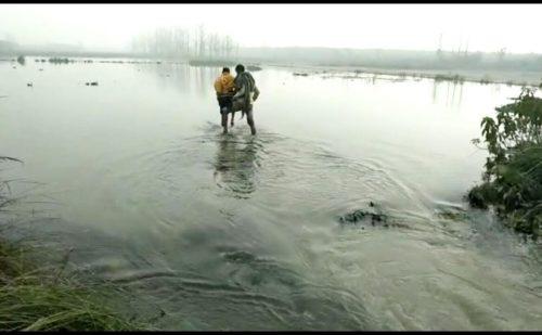 रेवाड़ी में कैनाल नहर के पानी ने गांव की सारी फसल को किया तबाह..