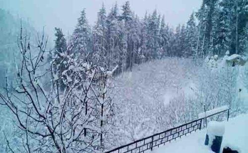 उत्तराखंड में फिर बदला मौसम का मिजाज, पहाड़ी इलाकों में बर्फबारी ने बढ़ाई ठंड