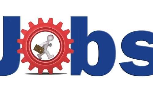 सबऑर्डिनेट सर्विसेज सेलेक्शन बोर्ड ने विभिन्न विभागों में निकाली नौकरियां