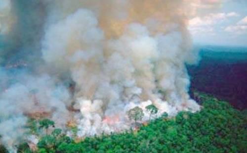 दुनिया को 20 फीसदी ऑक्सीजन देने वाले अमेजन के जंगलों में आग बुझाने की कोशिशें तेज