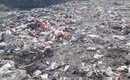 लक्सर: नगर पालिका के पास कूड़े के निस्तारण की नहीं पुख्ता व्यवस्था, बीमारियों की चपेट में आ रहे क्षेत्रवासी