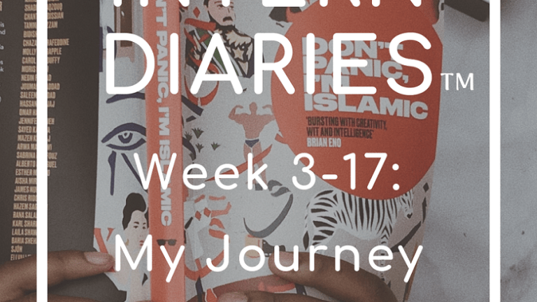 Intern Diaries: Internship Experiences(Week 3-17)