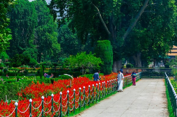 Shalimar Garden Kashmir