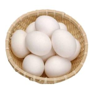 organic chicken eggs (deshi)