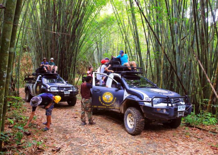 khao-lak-ausflüge-offroad-bambuswald