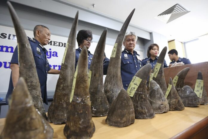 Image result for Malaysia seizes rhino horn