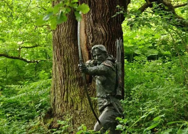 غابة شيروود، إنجلترا