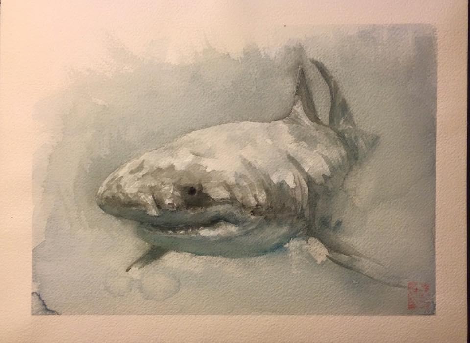 WatercolorShark_byKhasisLieb