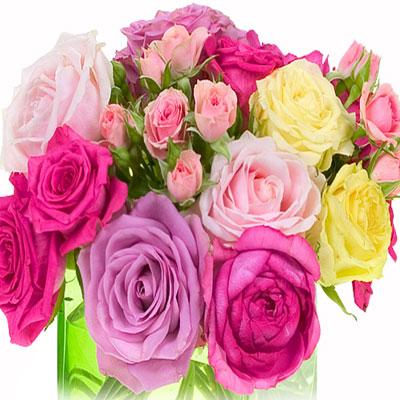 हर फूल कुछ बयां करता है  valentine-day-flower-1-1-1360477232