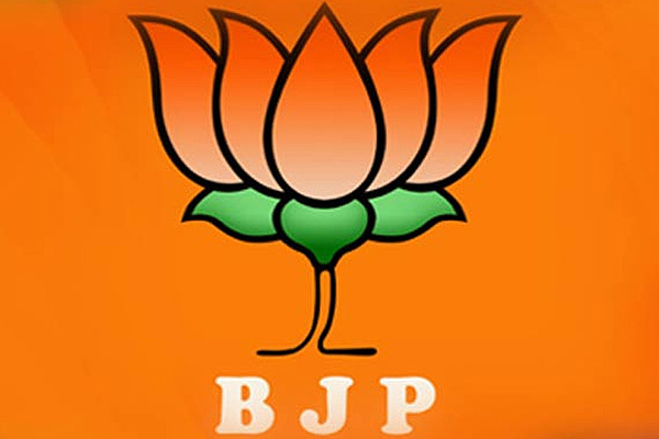 Caste details removed from BJP working committee list