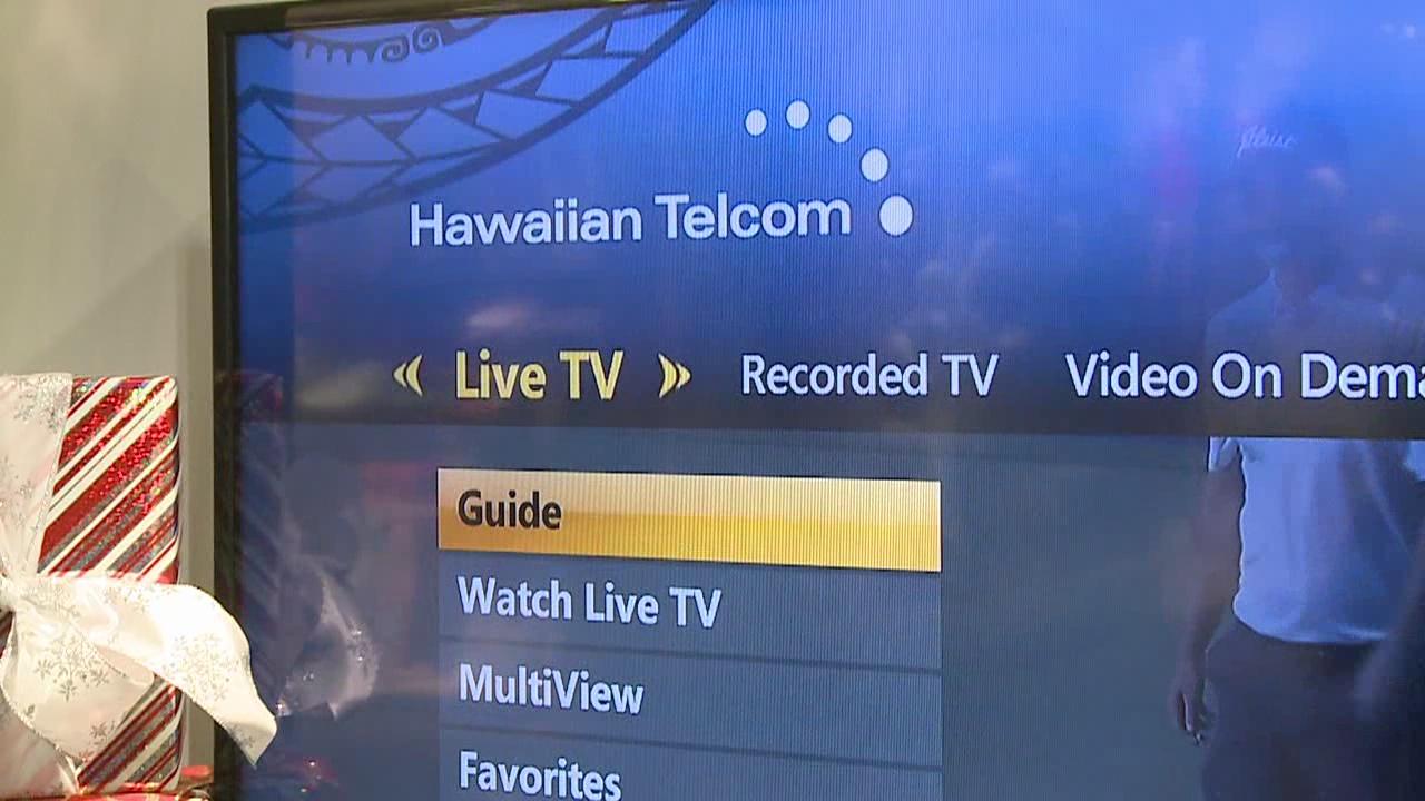 Hawaiian Telcom_136831