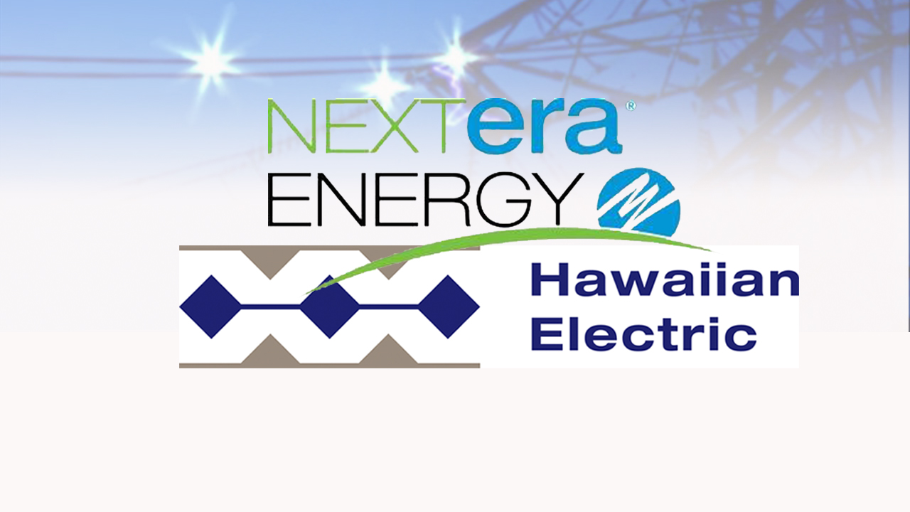 NEXTERA ENERGY HECO HAWAIIAN ELECTRIC full_116779