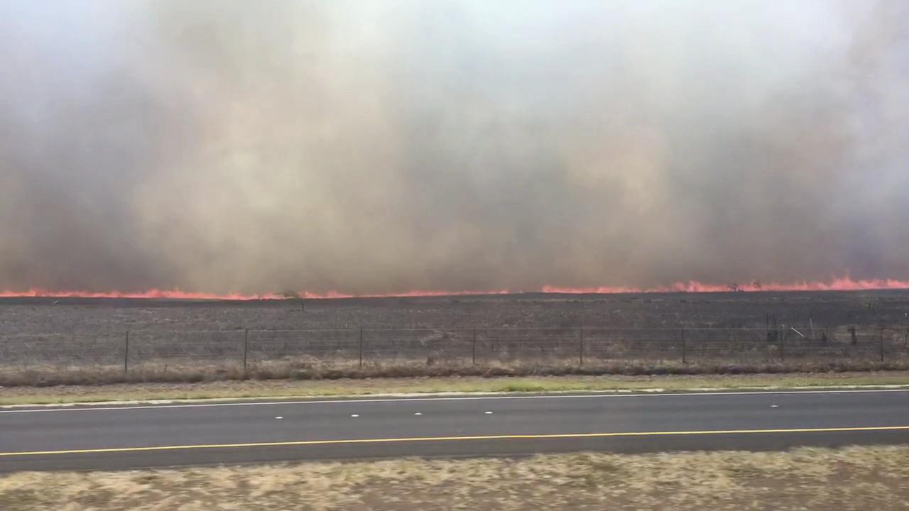 maui brush fire kayla delos santos_164826