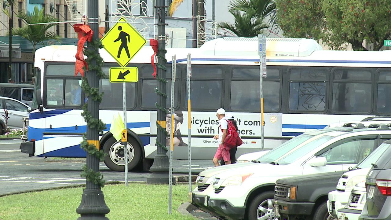 hele on big island bus_231998