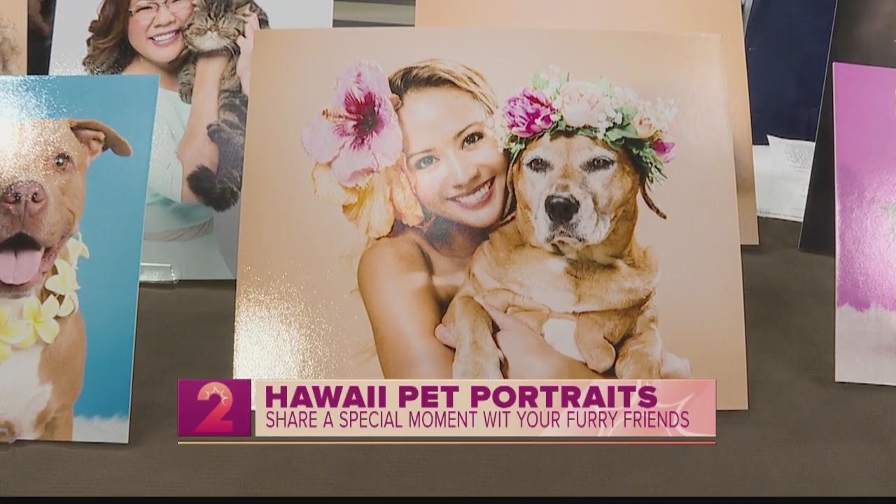 Take2: Hawaii Pet Portraits