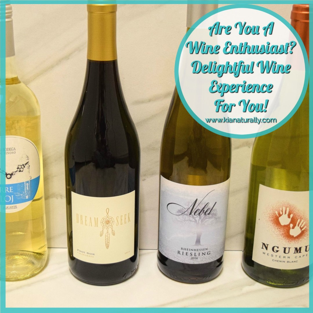 Are You A Wine Enthusiast? Delightful Wine Experience For You! - www.kianaturally.com