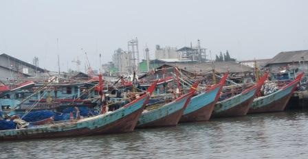 Kiara Khawatir Perundingan WTO Matikan Perikanan Nasional