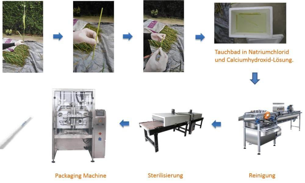 Manufacturing of rice drinking straws (trinkhalme, strohlame)