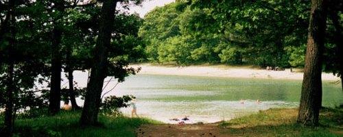 De Kibbelkoele – zwemmen in het bos