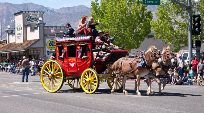 A Slideshow of Mules & The Largest Non-Motorized Parade in the US