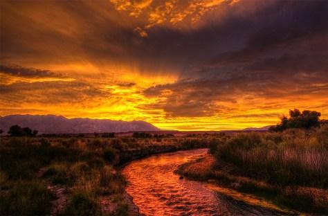 sunset_arnie