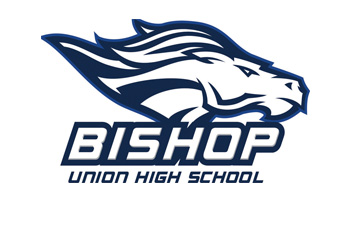 Bishop High School's JV Baseball Team Disbanded Due to Incident