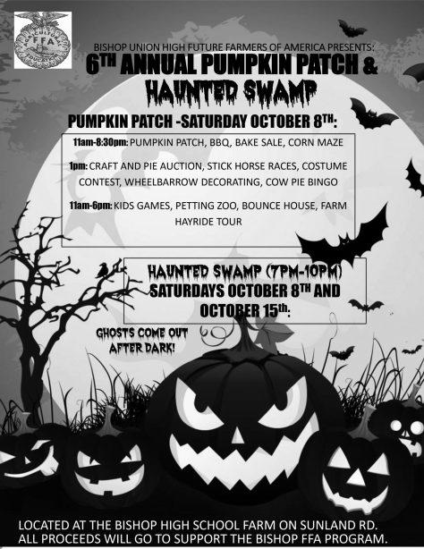 pumpkin-patch-flyer-2016