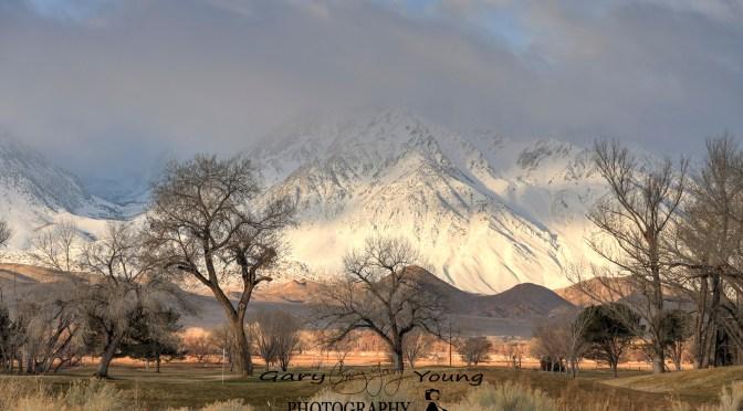 Sierra Snowpack Report Improving Each Month