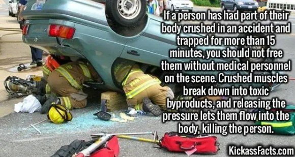 2571 Accidents-If a person has had part of their body crushed in an accident and trapped for more than 15 minutes, you should not free them without medical personnel on the scene. Crushed muscles break down into toxic byproducts, and releasing the pressure lets them flow into the body, killing the person.