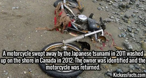 2662 Tsunami Motorcycle-A motorcycle swept away by the Japanese tsunami in 2011 washed up on the shore in Canada in 2012. The owner was identified and the motorcycle was returned.