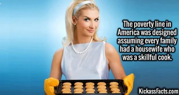 2690 Cooking Housewife-The poverty line in America was designed assuming every family had a housewife who was a skillful cook.