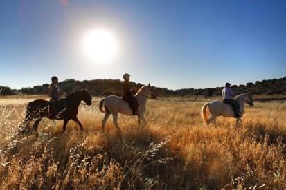 horseriding at Barceló La Bobadilla