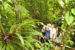 trekking at Manu Biosphere reserve crees