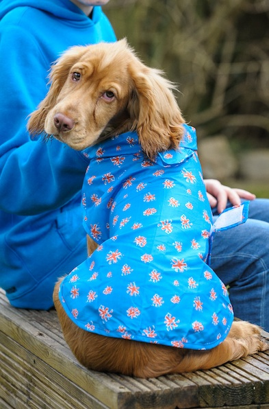 mac paws raincoat