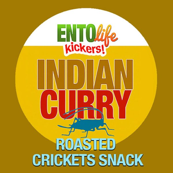 Edible Crickets Indian Curry