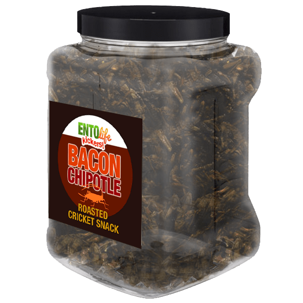 Pound Crickets You Can Eat - Bacon Chipotle Flavor