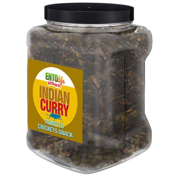 Jar 1lb Crickets Indian Curry Flavor