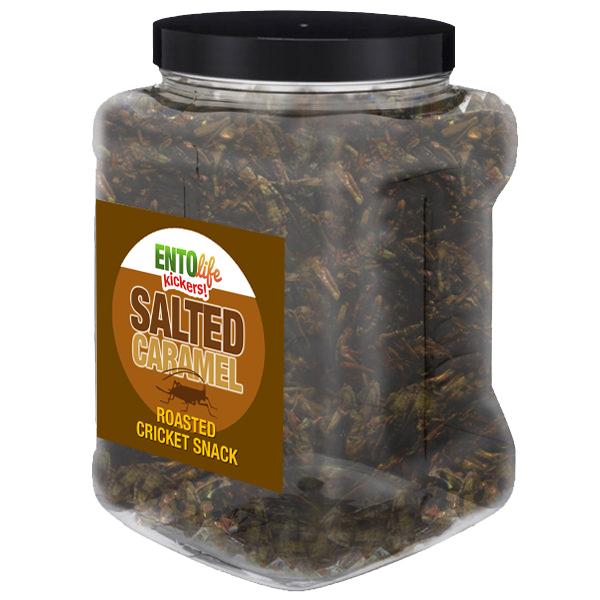 Jar 1lb Crickets Salted Caramel Flavor