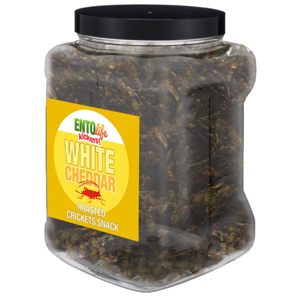 Jar 1lb Crickets White Cheddar Flavor