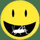 Edible crickets for human consumption