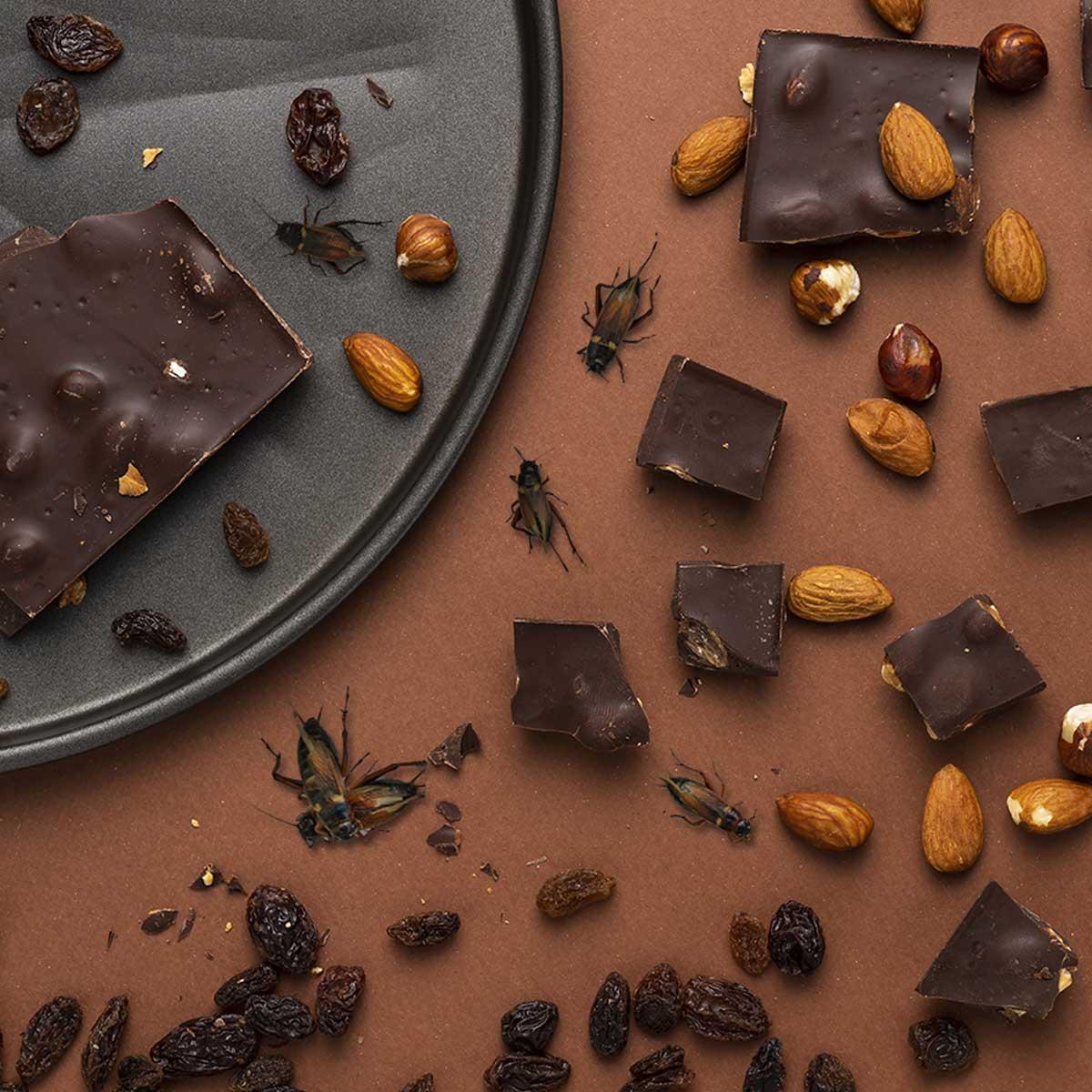 Crickets & Chocolate