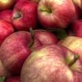 apples-9-20-2013