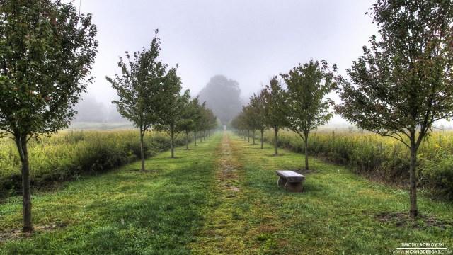 straight-path-10-14-2013