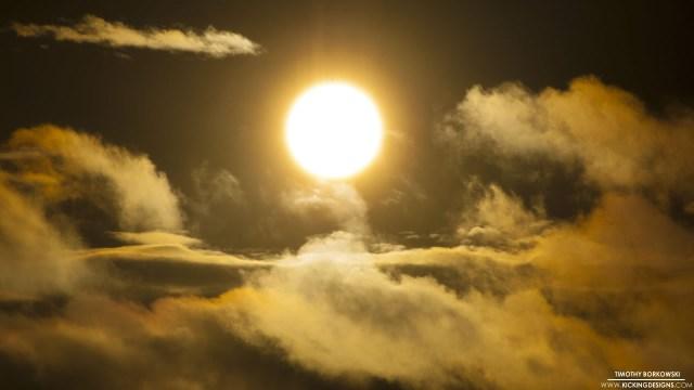 morning-sun-up-close-12-6-2013